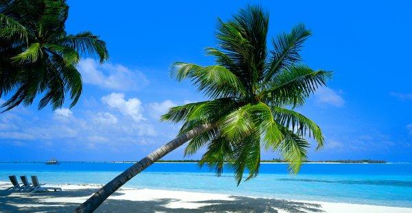 Mer des Caraïbes